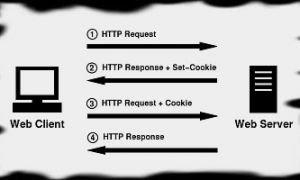 Что такое cookies и как с ними работать