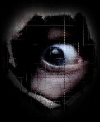 защита информации в компьютерных сетях с помощью затыкание дыр