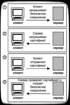 Процесс аутентификации клиента сервером с помощью протокола SSL